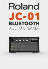 Roland JC-01 Bluetooth Kaiutin